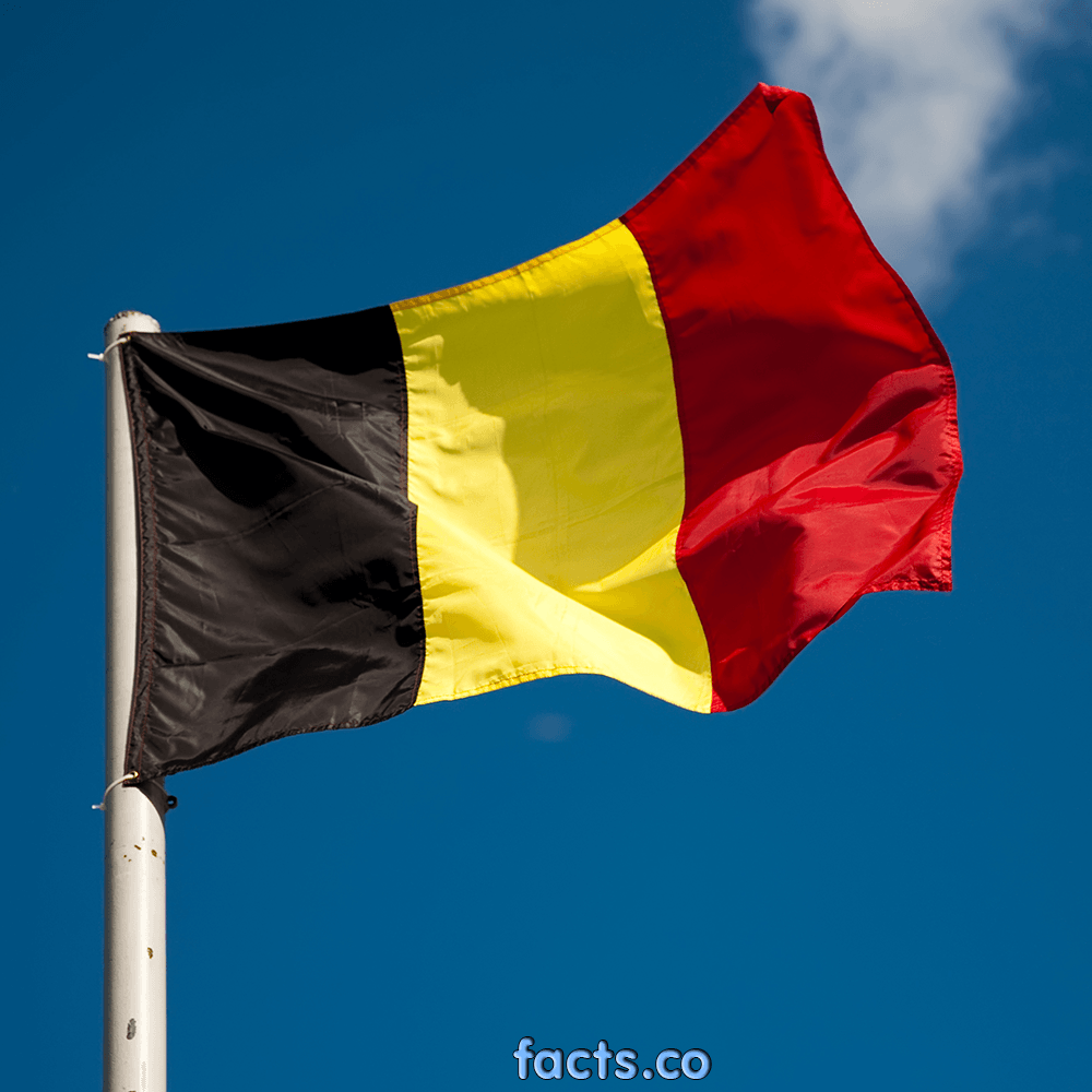 Flag Of Belgium The Symbol Of Independence. Pictures & Images