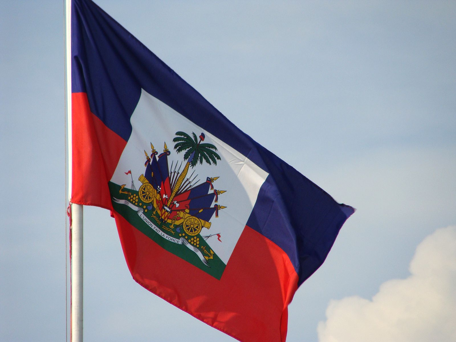 haiti flag Google Search | Flags | Pinterest | Facts, Historian