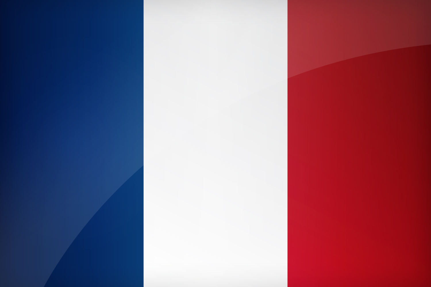 This is a picture of Impertinent Printable French Flag