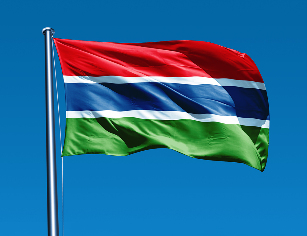 Flag of the Gambia Wikipedia