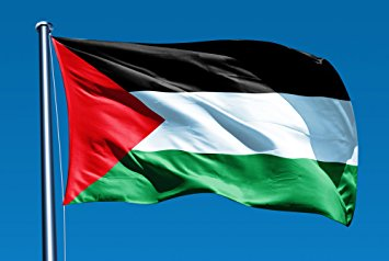 The official flag of the Palestine