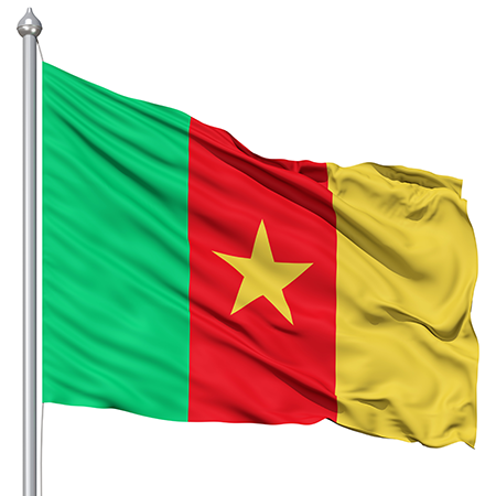 Cameroon Flag colors meaning history of Cameroon Flag