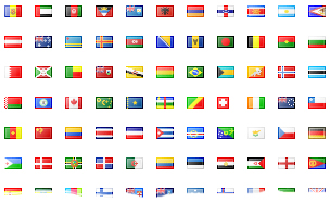 To flag or not to flag language links? Motiva Web Consulting