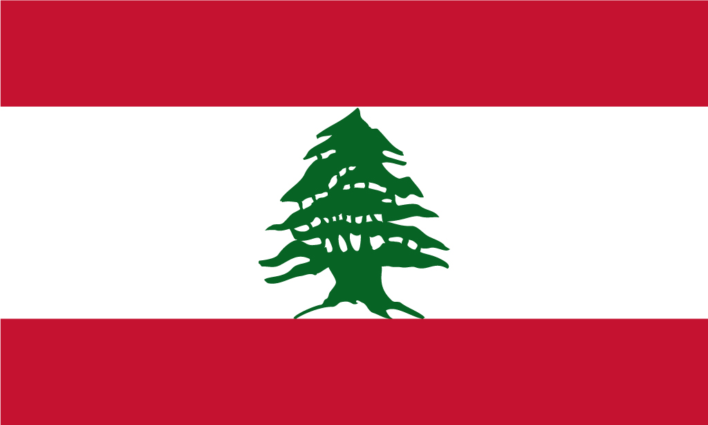 17 Best ideas about Lebanon Flag on Pinterest | Lebanon, Beirut