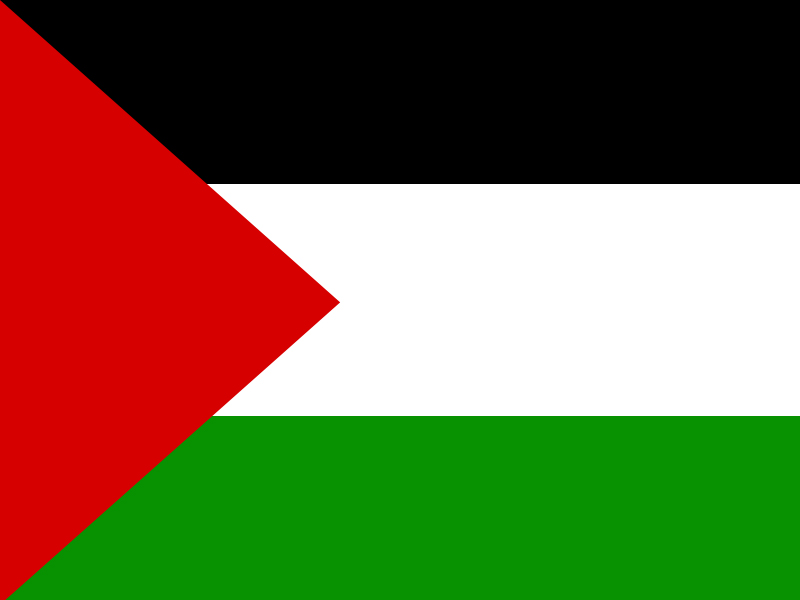 Amazon.: Flag of Palestine 3x5 ft Flags 3 x 5 Palestinian NEW
