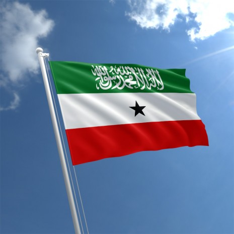 Wallpaper for Computer Somaliland flag desktop wallpaper 1920