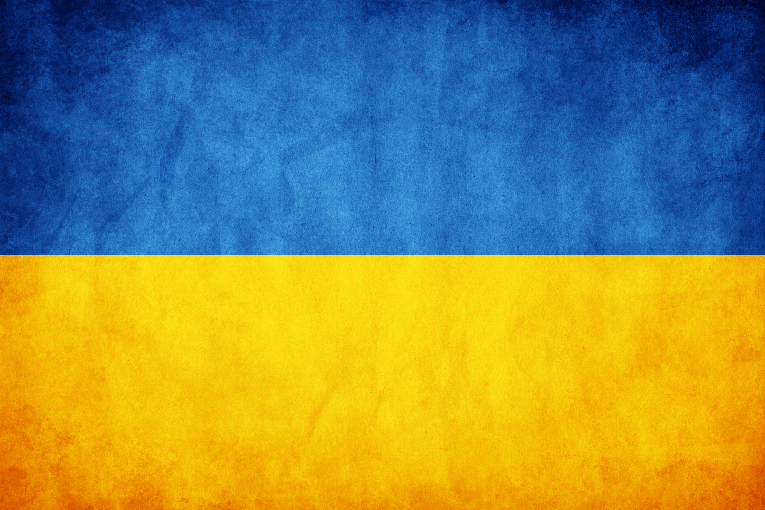 Ukraine flag vector country flags