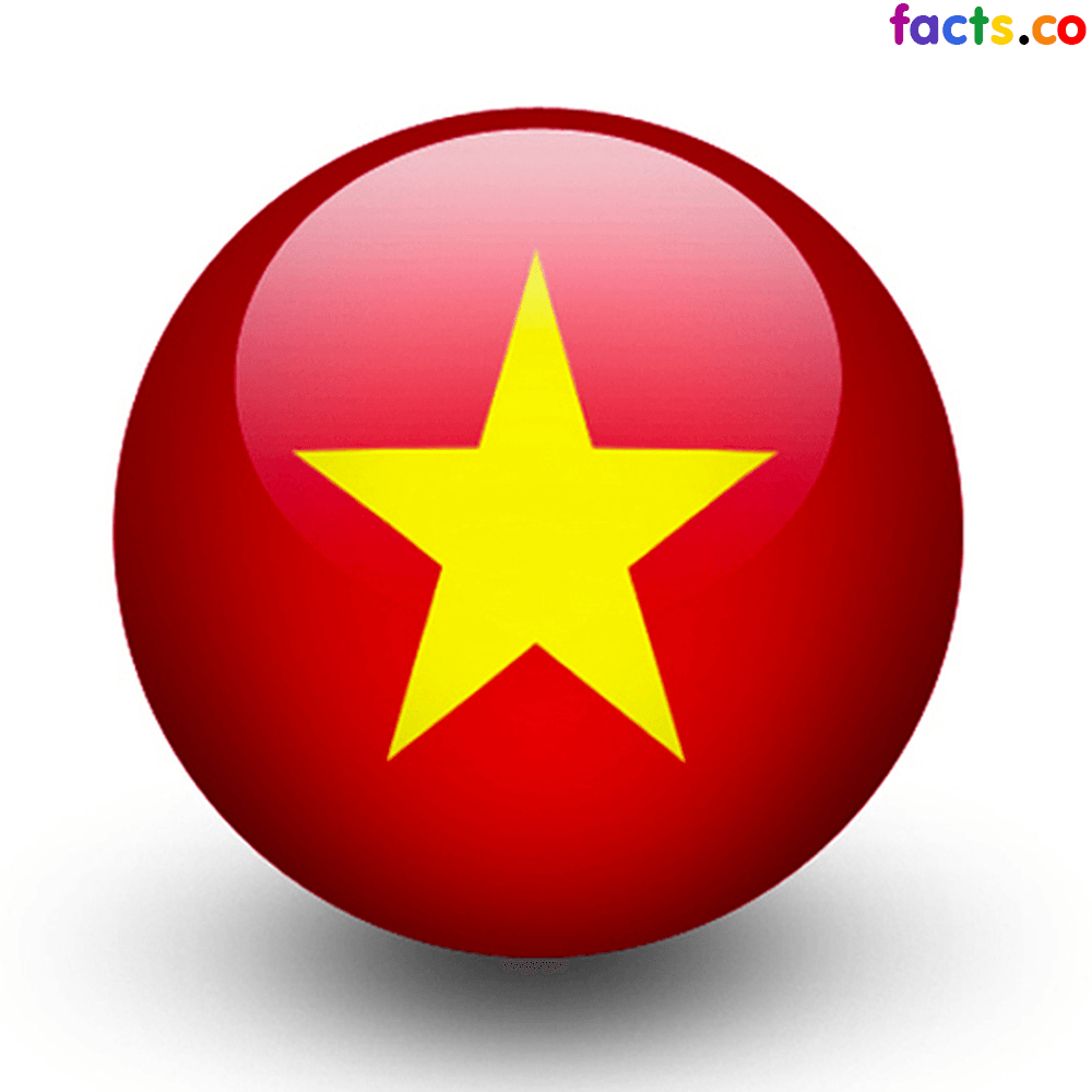 17 Best ideas about Vietnam Flag on Pinterest | Flag of france